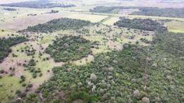 CHACO - CENSO AGROPECUARIO