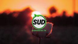 Sud TV 30.12.2018