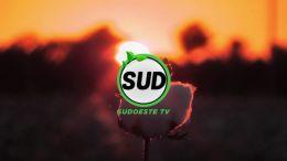 STV | T :2 | E :4