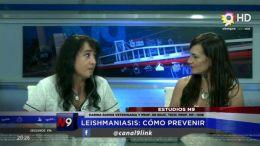 CORRIENTES - Leishmaniasis: Como Prevenir