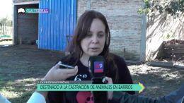 LTTV | T :2 | E :20
