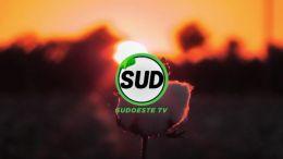 STV | T :2 | E :26