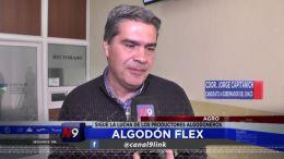 FLASH N9 | ALGODÓN FLEX | 15.09