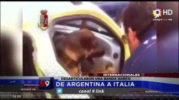 DESARTICULARON UNA BANDA NARCO | INTERNACIONAL  | 01.10