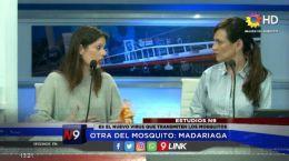 ES EL NUEVO VIRUS QUE TRANSMITEN LOS MOSQUITOS | CORRIENTES | 04.10