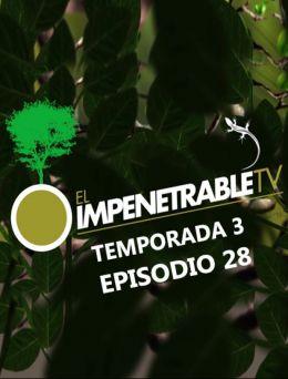 EITV | T :3 | E :28