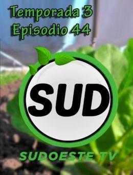 STV | T :3 | E :44