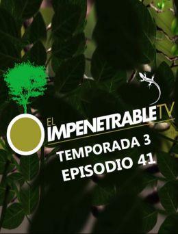 EITV | T :3 | E :41