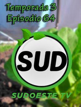 STV | T :3 | E :64