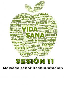 Vida Sana | Sesión 11