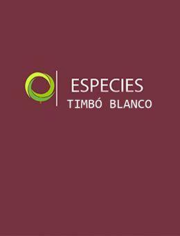 Especies | Timbó Blanco
